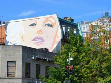 Neighborhood Spotlight: Woodley Park